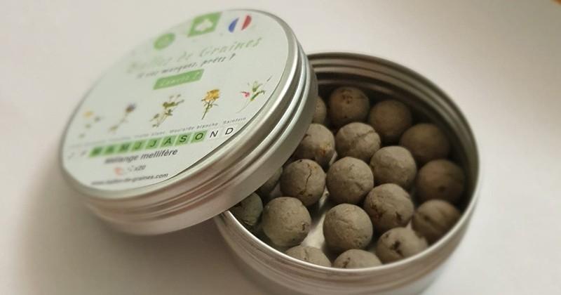 Il vous est possible de recevoir des «bombes de graines» gratuitement