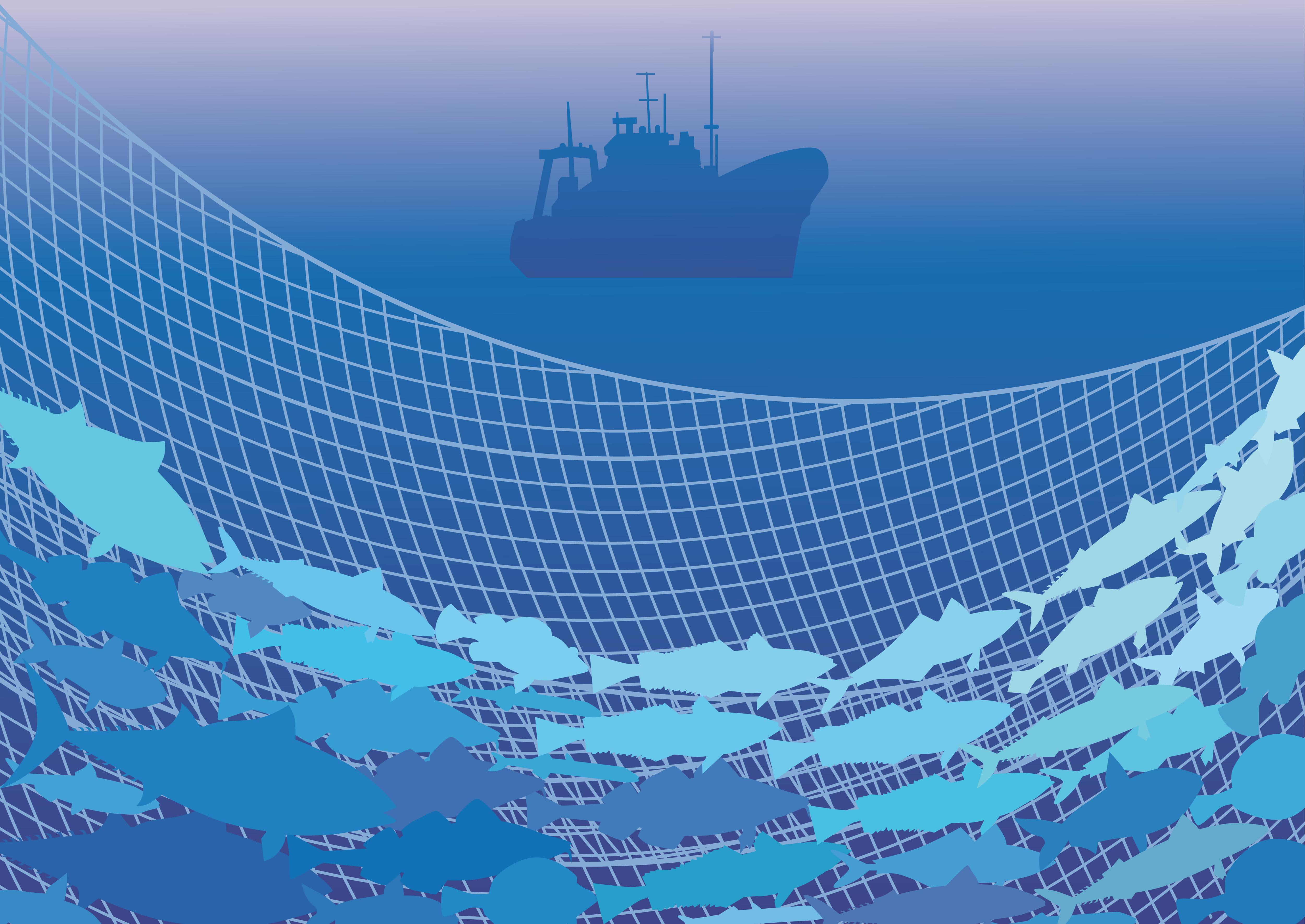 Biodiversité : l'Europe vote l'interdiction de la pêche électrique