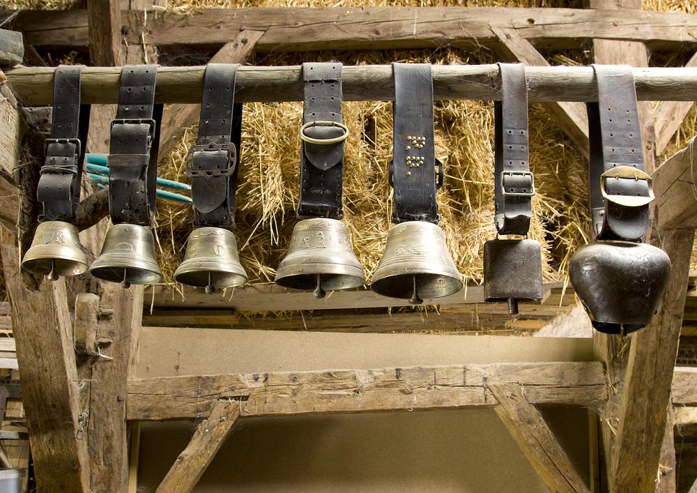 Haute-Savoie: des riverains lancent une pétition contre les cloches des vaches