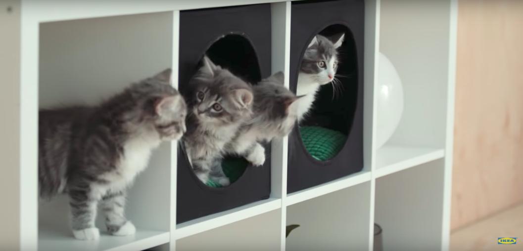 ikea lance une collection sp cialement d di e votre animal de compagnie. Black Bedroom Furniture Sets. Home Design Ideas