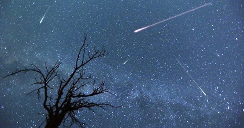 Orionides : où et à quelle heure observer les étoiles filantes ?