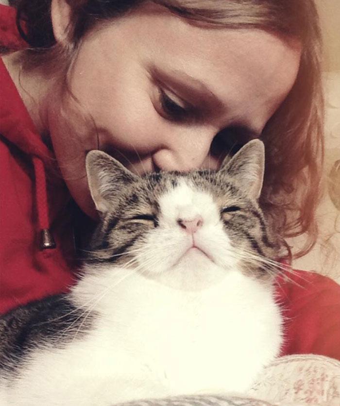 Je vous pr sente monty le chat adorable qui avait une - Chat fait pipi sur le lit ...