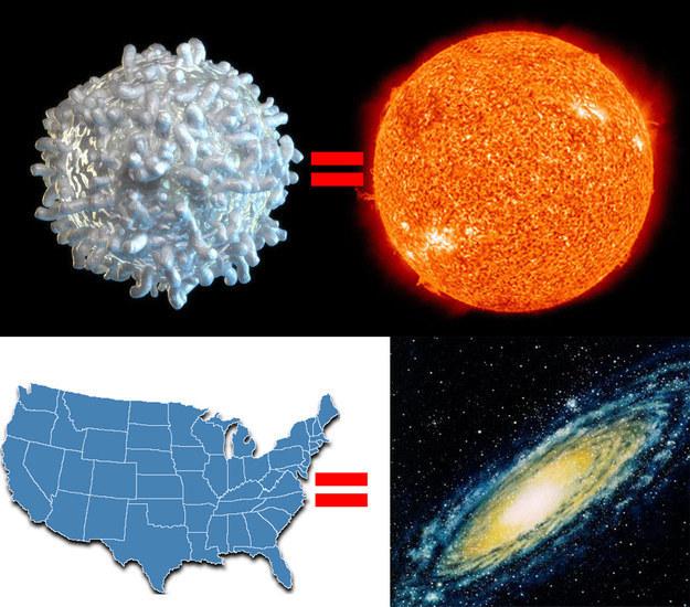 Comment penser que la vie n'est présente que sur Terre ? S