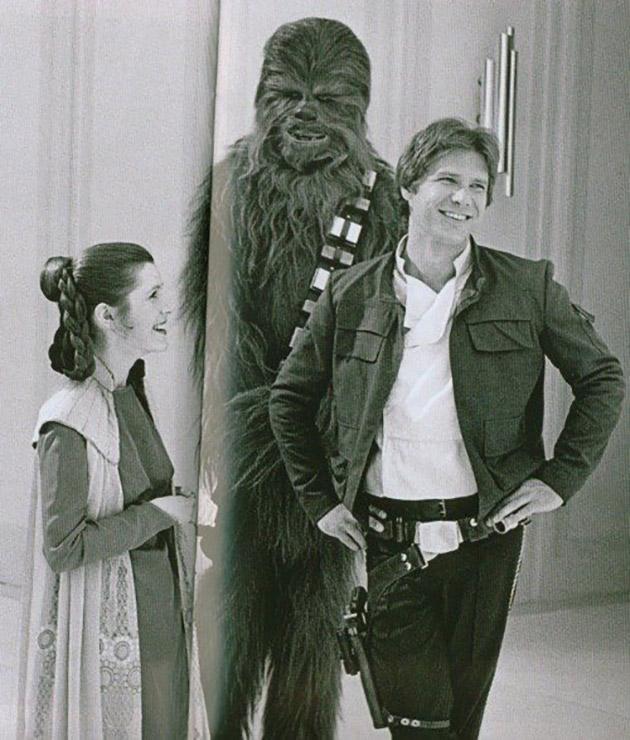 Chien - Encyclopdie Star Wars HoloNet