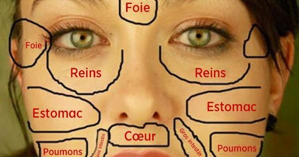 8e37e5bbe61 Vos problèmes de peaux sont des signaux de vos organes vitaux ! Découvrez  lesquels.