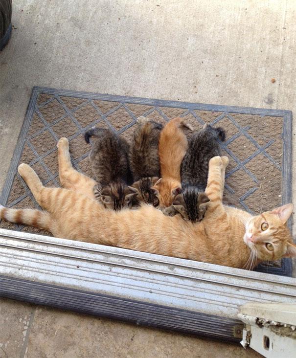 minuscule serré chatte photos adolescent voiture sexe vidéo