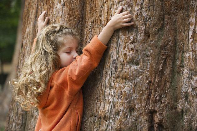 """Résultat de recherche d'images pour """"gif touche du bois"""""""