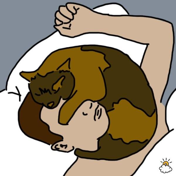 Dormir chatte adolescent
