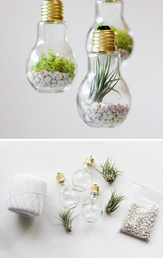 27 idées créatives pour réaliser de superbes terrariums ...