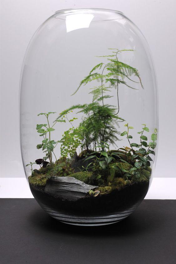 27 idées créatives pour réaliser de superbes terrariums, pour votre ...
