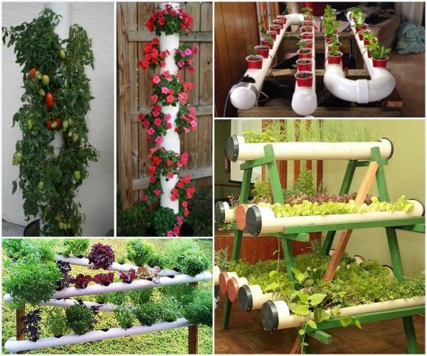 30 utilisations cr atives de tuyaux en pvc pour la maison et le jardin la serre amovible est. Black Bedroom Furniture Sets. Home Design Ideas