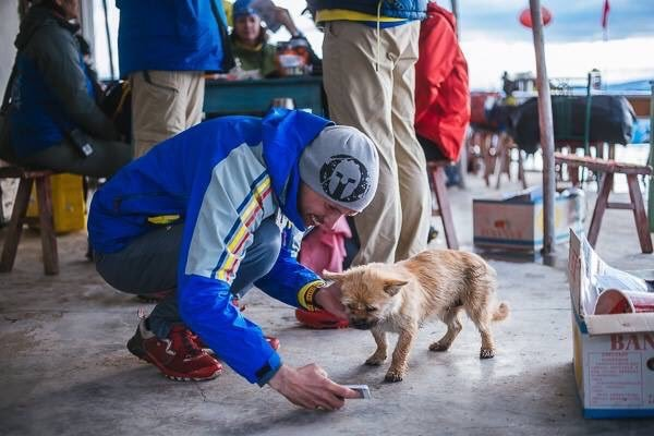 Un chien errant rejoint un marathonien, court 100km à ses côtés, et devient son animal de compagnie ! Camp%20enseble