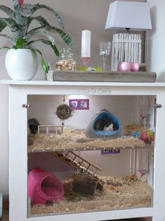 Dans une table basse qui ne sert plus, vous pouvez créer une très jolie cage  ! 5e84372b77a1