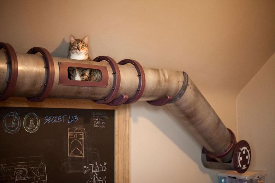 Maison Pour Chat Fait Maison Maison Pour Chat et Son Toit