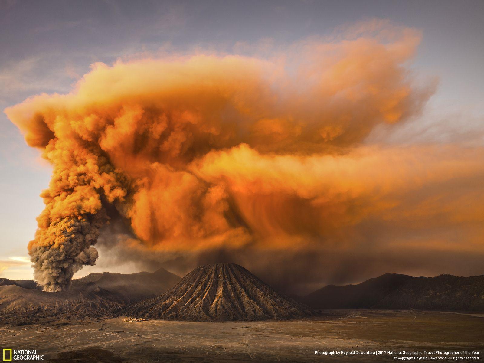 National Geographic Foto Des Jahres