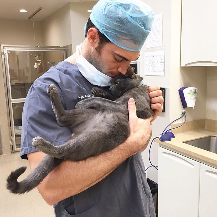 Cette clinique embauche un câlineur de chats professionnel !