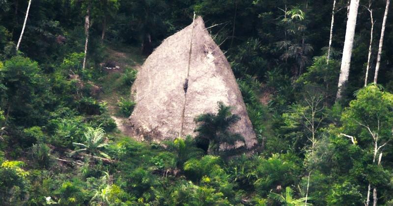 Des images inédites révèlent l'existence d'une tribu inconnue au Brésil ! Par Justine B. Couv2_7