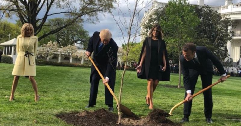 les internautes d tournent avec humour la photo de macron et trump plantant un arbre dans le. Black Bedroom Furniture Sets. Home Design Ideas