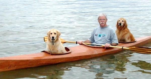 Cet homme a construit son propre kayak pour pourvoir embarquer ses chiens dans ses folles aventures. Génial !