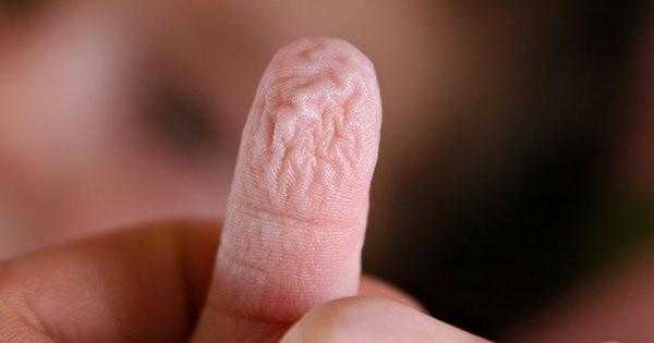 Quand vous saurez pourquoi vos doigts se «dessèchent» dans l'eau, vous serez abasourdis !