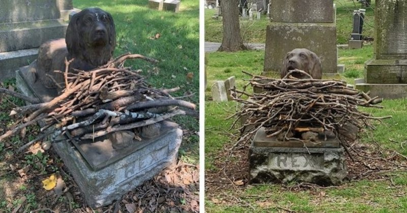 Dans ce cimetière, les visiteurs déposent des bâtons au pied de la statue d'un chien décédé il y a 100 ans