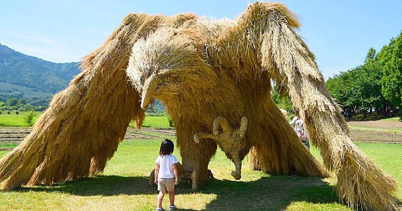Au Japon, des artistes créent d'impressionnantes sculptures en paille pour le Wara Art Festival
