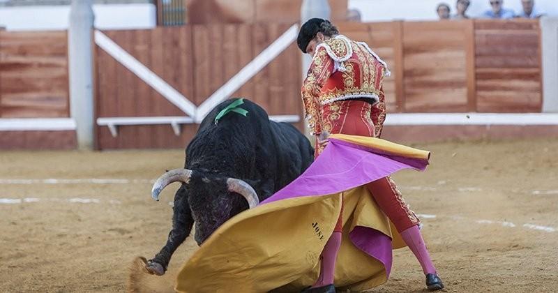 Les Îles Baléares ont pris la décision d'interdire les corridas avec mise à mort des taureaux