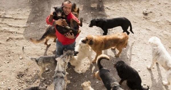 Après avoir découvert l'horreur dans un abattoir pour chien, un millionnaire Chinois fut si horrifié qu'il a utilisé toute sa fortune pour transformer l'abattoir en refuge...