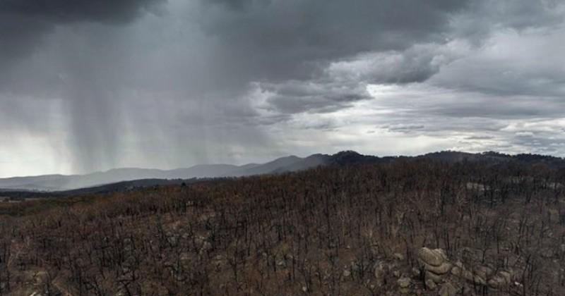 La pluie tombe enfin sur les incendies en Australie