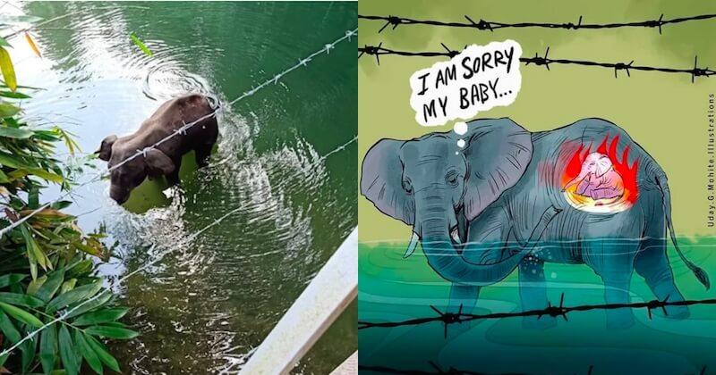 Une éléphante enceinte meurt après avoir avalé un fruit rempli de pétards, des artistes lui rendent hommage