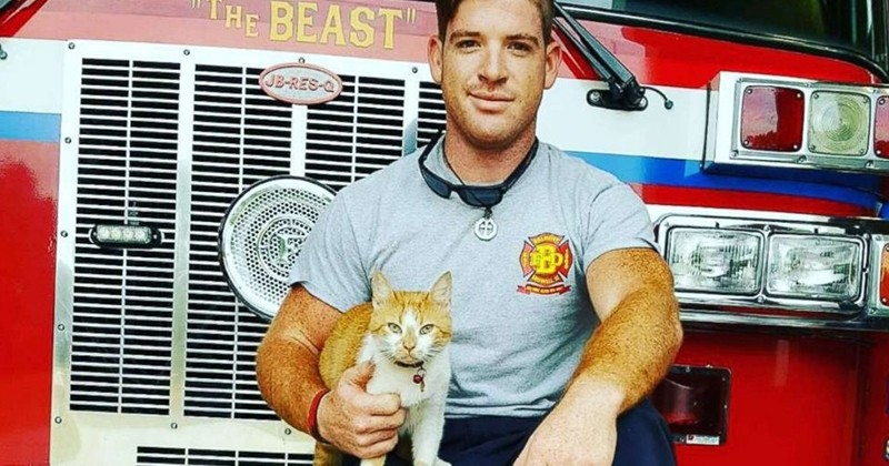 Une brigade de pompiers a décidé d'adopter un chat