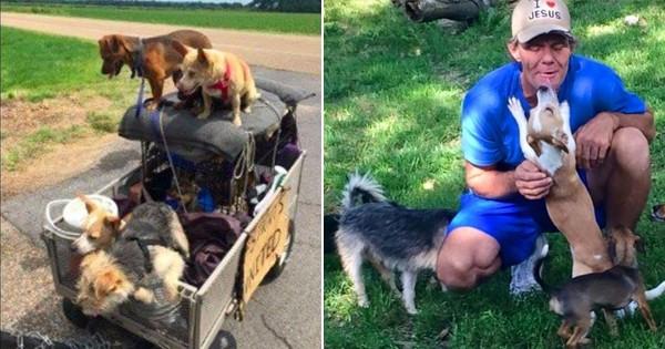 Un homme sans abri recueille tous les chiens errants qu'il croise sur son chemin! Un beau geste qui montre que la solidarité est partout et accessible à tous!