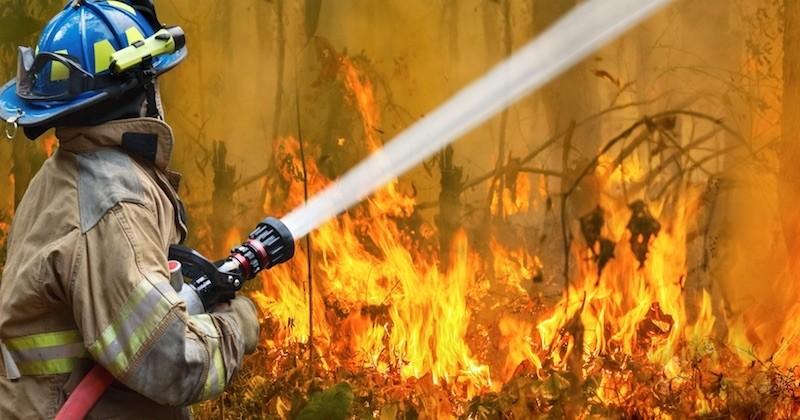 Le « méga-feu » le plus important a enfin été maîtrisé en Australie, la pluie tant attendue devrait bientôt faire son apparition