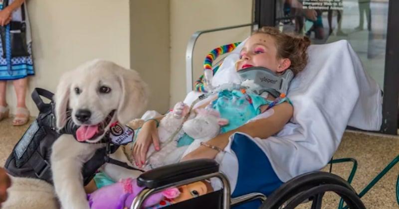 Une fillette paralysée de 6 ans se lie d'amitié avec son futur chien d'assistance