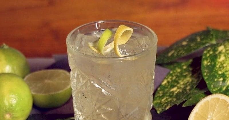 Découvrez le Jock Collins, un cocktail subtil au whisky et au citron!