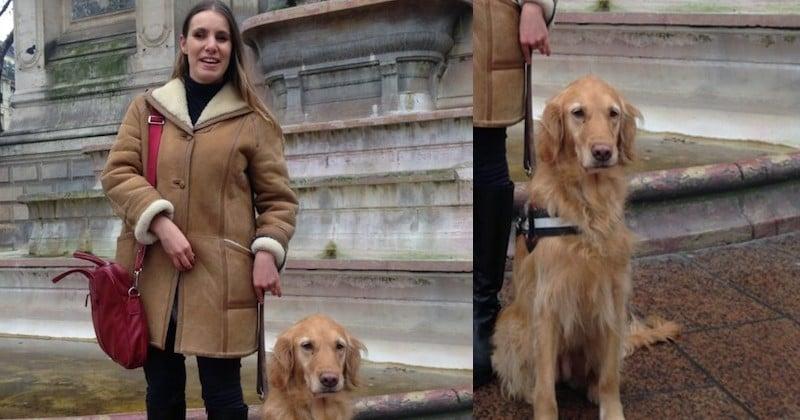 Recalée avec son chien guide par trois chauffeurs Uber, une aveugle s'indigne sur les réseaux sociaux