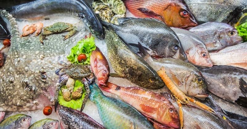 Selon UFC-Que Choisir, 9 poissons sur 10 vendus en grande surface sont issus d'une « pêche non-durable »