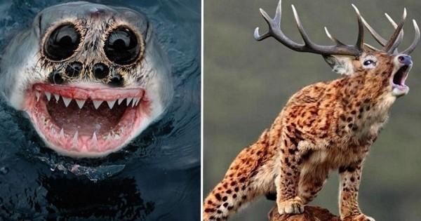 Vous n'aimeriez pas croiser l'un de ces animaux très étranges et vraiment flippants !