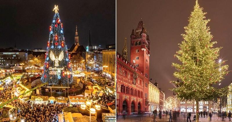15 sapins de Noël parmi les plus majestueux et extravagants du monde