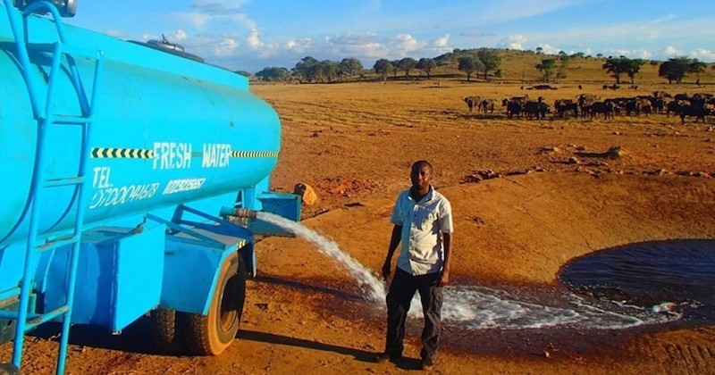 Patrick Kilonzo Mwalua, l'homme qui apporte de l'eau à des animaux chaque jour