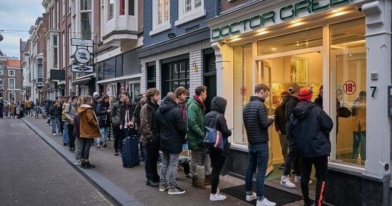 Coronavirus : Aux Pays-Bas, les habitants se ruent dans les coffee shop pour faire le plein de cannabis avant le confinement