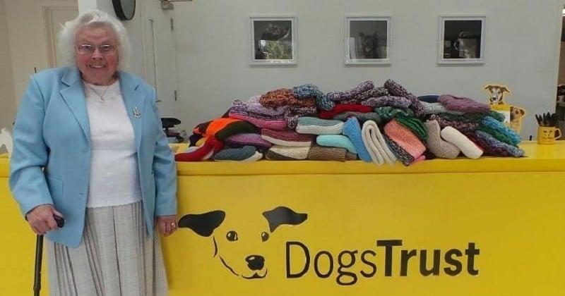 Âgée de 89 ans, elle tricote plus de 400 couvertures et les offre à des chiens de refuge