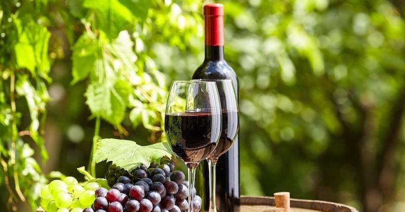 Buvez du vin ! 18132264205d4049eb9a9ad_vin-rouge-cover-2