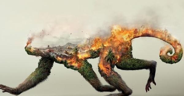Ces images glaçantes dénoncent la manière dont l'espèce animale est menacée par les Hommes : ça fait froid dans le dos...