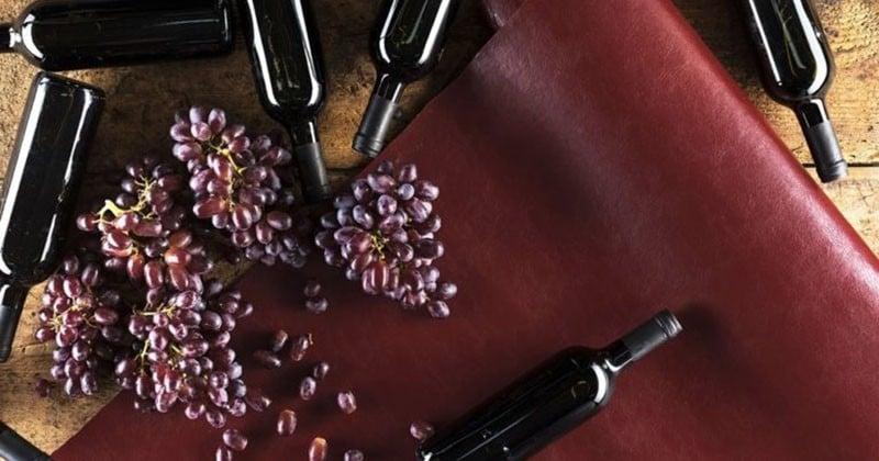 Le cuir de raisin, le nouveau cuir végétal comme alternative au cuir animal !
