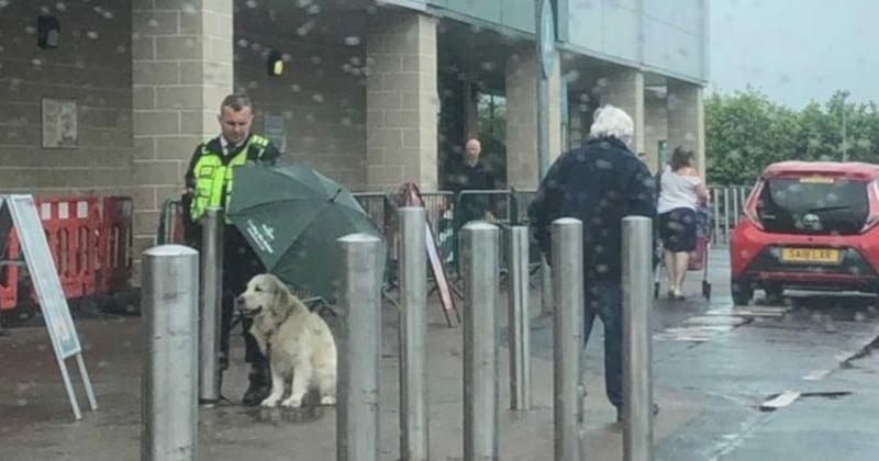 En Écosse, un agent de sécurité a utilisé son parapluie pour protéger un chien d'une grosse averse