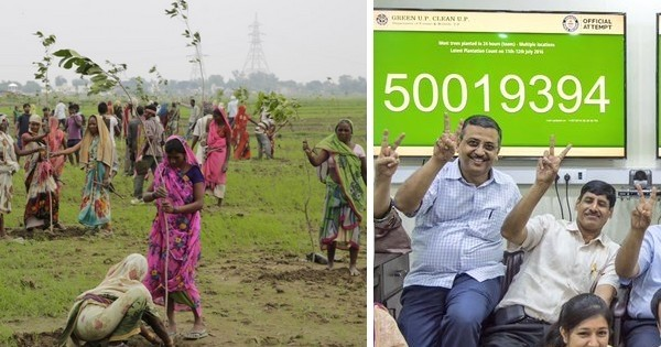 Allez, une bonne nouvelle pour changer : L'Inde vient de battre le record du monde du plus  grand nombre d'arbres plantés en une seule journée !