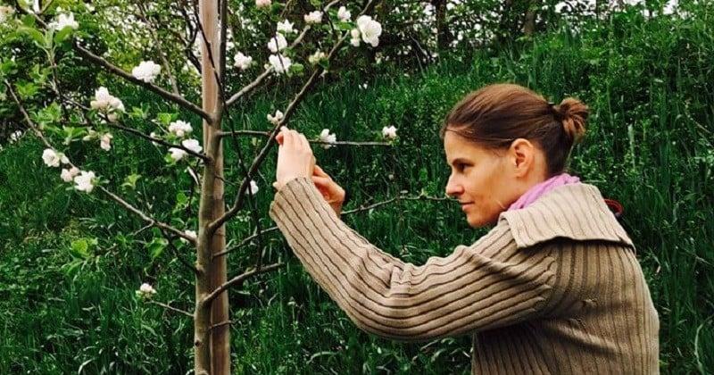Les «Guérilla greffeurs» greffent secrètement des branches fruitières sur les arbres stériles des villes pour lutter contre la malnutrition