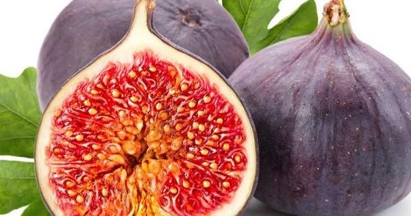 Le saviez-vous ? En mangeant une figue, vous mangez aussi... une guêpe (enfin presque)