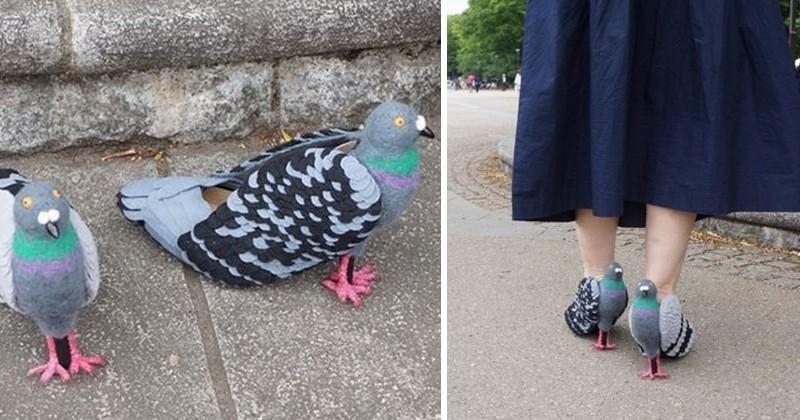 Pour ne plus faire peur aux pigeons cette femme a d cid - Faire peur aux oiseaux jardin ...